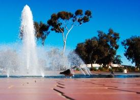 Balboa Park Fountain-1