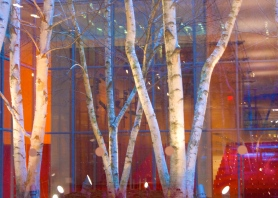 Trees & Times Center