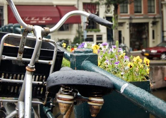 Typical bike_bridge_flowers scene